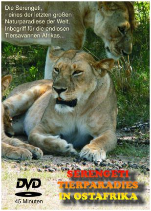 DVD: Serengeti - Tierparadies in Ostafrika