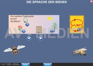 Biologie: interaktive digitale tafelbilder